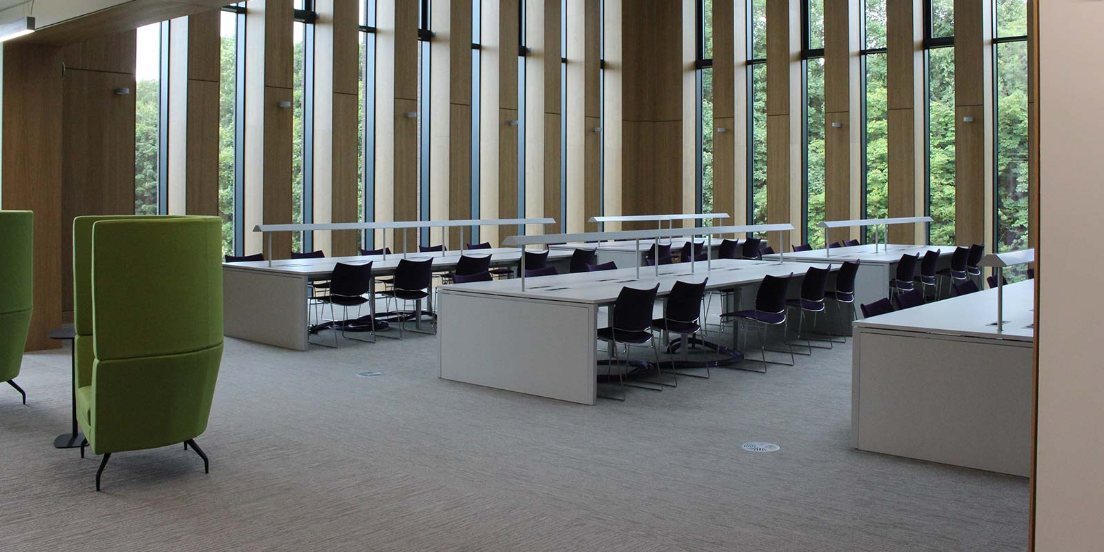 Gluckman Library 7